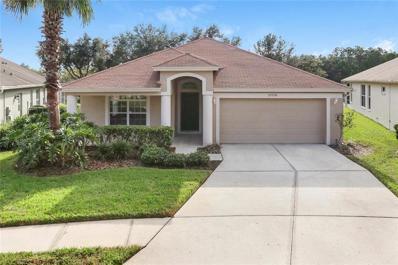 27536 Wekiva Lane, Wesley Chapel, FL 33544 - MLS#: T3140435