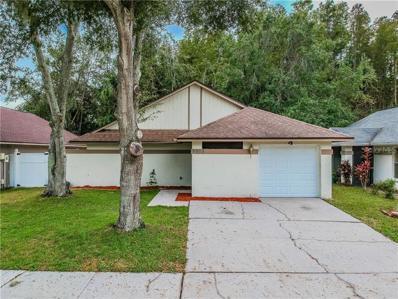 5908 Birchwood Drive, Tampa, FL 33625 - #: T3140588