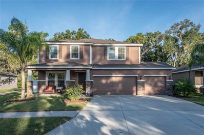 10325 Riverdale Rise Drive, Riverview, FL 33578 - MLS#: T3140594