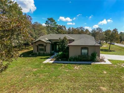 12305 Osprey Avenue, Weeki Wachee, FL 34614 - MLS#: T3140597