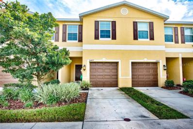 20419 Berrywood Lane, Tampa, FL 33647 - MLS#: T3140712