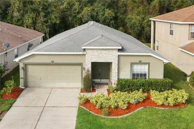8507 Tidal Bay Lane, Tampa, FL 33635 - #: T3140750