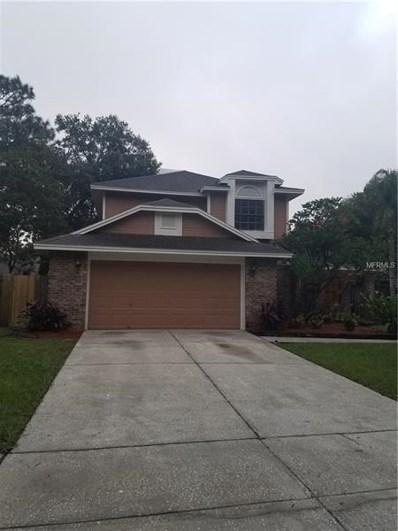 15111 Craggy Cliff Street, Tampa, FL 33625 - MLS#: T3140782