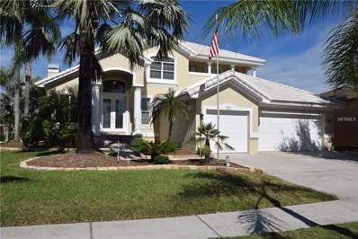 817 Bunker View Drive, Apollo Beach, FL 33572 - MLS#: T3140814