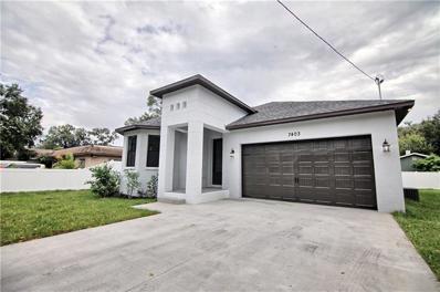 7403 N Rome Avenue, Tampa, FL 33604 - MLS#: T3141156