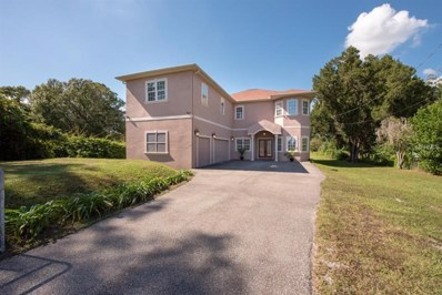 17512 Boy Scout Road, Odessa, FL 33556 - MLS#: T3141226