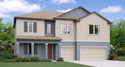 11701 Sunburst Marble Road, Riverview, FL 33579 - #: T3141274
