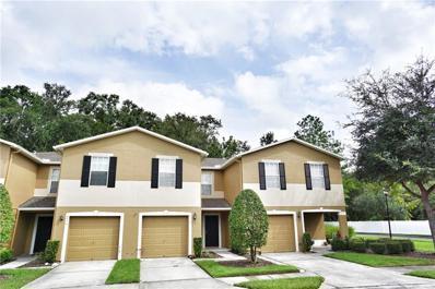 4312 Silver Falls Drive, Land O Lakes, FL 34639 - MLS#: T3141396