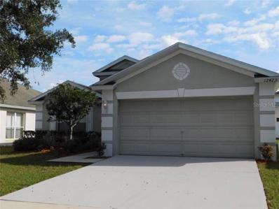 12423 Cedarfield Drive, Riverview, FL 33579 - MLS#: T3141452
