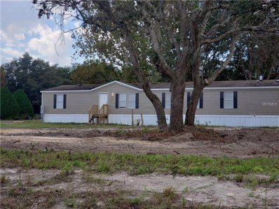 17125 Lawless Road, Spring Hill, FL 34610 - MLS#: T3141507