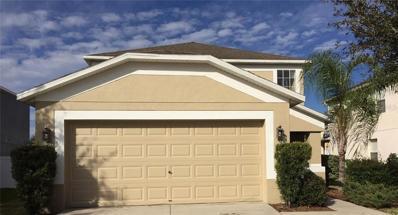 10743 Shady Preserve Drive, Riverview, FL 33579 - MLS#: T3141514