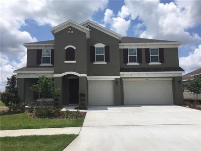 11803 Sunburst Marble Drive, Riverview, FL 33579 - #: T3141661