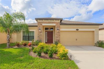11412 Blue Crane Street, Riverview, FL 33569 - MLS#: T3141664