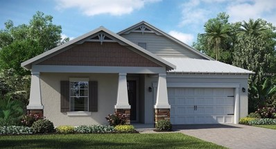 3462 Shallow Cove Lane, Clermont, FL 34711 - MLS#: T3141691