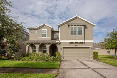 19310 Water Maple Drive, Tampa, FL 33647 - MLS#: T3141771