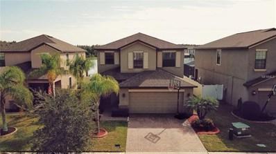 12572 Longstone Court, Trinity, FL 34655 - #: T3141840