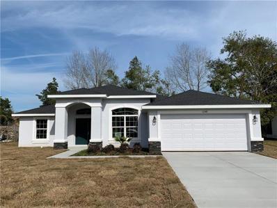 11248 Murraysville Drive, Spring Hill, FL 34609 - MLS#: T3141849