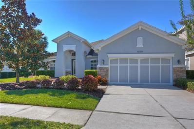 14704 Tudor Chase Drive, Tampa, FL 33626 - MLS#: T3142097