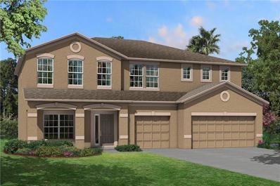 18863 Diego Circle, Spring Hill, FL 34610 - #: T3142116