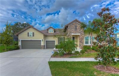 14206 Quintessa Lane, Lithia, FL 33547 - MLS#: T3142173