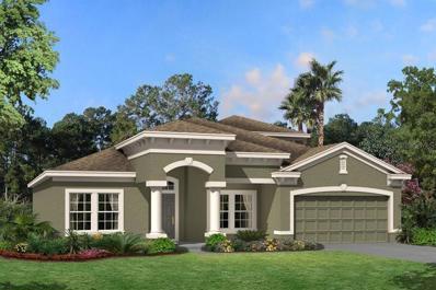 8221 Mallow Mirror Lane, Land O Lakes, FL 34637 - MLS#: T3142224