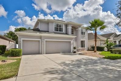 10726 Deerberry Drive, Land O Lakes, FL 34638 - #: T3142248