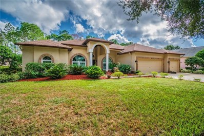 3816 Turkey Oak Drive, Valrico, FL 33596 - MLS#: T3142267