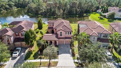 20321 Chestnut Grove Drive, Tampa, FL 33647 - MLS#: T3142271
