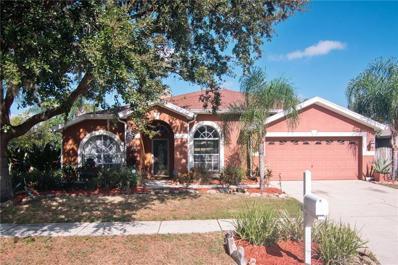 10110 Tantara Court, Riverview, FL 33578 - MLS#: T3142349