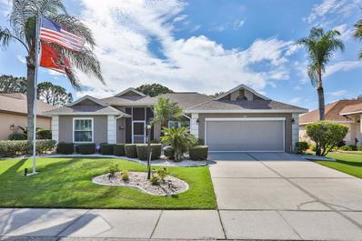 328 Caloosa Palms Court, Sun City Center, FL 33573 - MLS#: T3142529