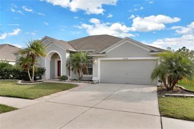 25538 Aptitude Terrace, Wesley Chapel, FL 33544 - MLS#: T3142746