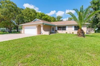 3441 Thunderbird Avenue, Spring Hill, FL 34606 - MLS#: T3142820