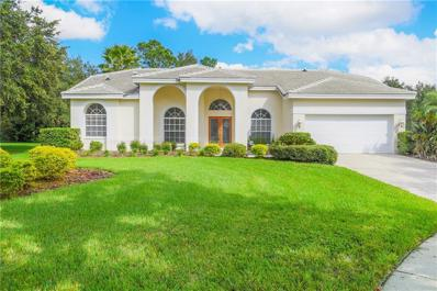 9103 Highland Ridge Way, Tampa, FL 33647 - #: T3142885
