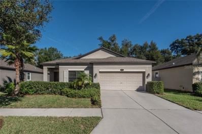 211 Dakota Hill Drive, Seffner, FL 33584 - #: T3142904