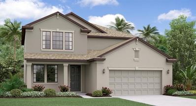 6219 English Hollow Road, Tampa, FL 33647 - #: T3142991