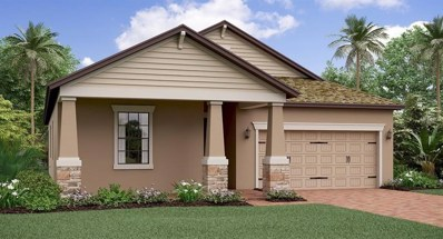 6221 English Hollow Road, Tampa, FL 33647 - #: T3143001