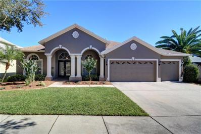 19340 Wind Dancer Street, Lutz, FL 33558 - MLS#: T3143041