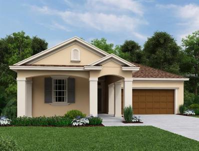 2845 Posada Lane, Odessa, FL 33556 - MLS#: T3143330