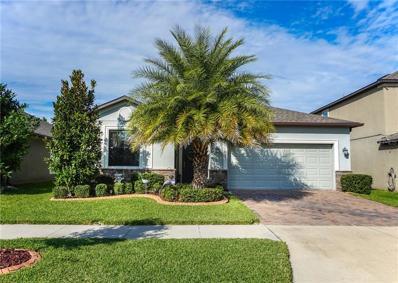 10221 Celtic Ash Drive, Ruskin, FL 33573 - MLS#: T3143382