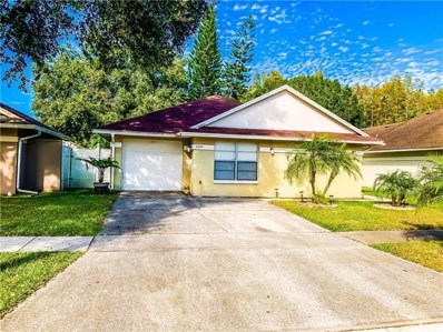 6009 Lemon Tree Court, Tampa, FL 33625 - MLS#: T3143509