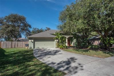 10226 Ashley Oaks Drive, Riverview, FL 33578 - MLS#: T3143619