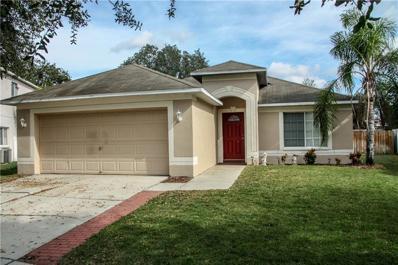 11221 Lake Lanier Drive, Riverview, FL 33569 - MLS#: T3143642