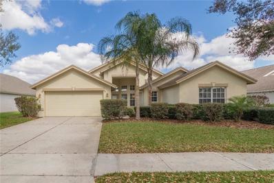 5426 Twin Creeks Drive, Valrico, FL 33596 - MLS#: T3144217