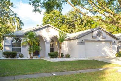 2514 Allwood Avenue, Valrico, FL 33596 - MLS#: T3144254