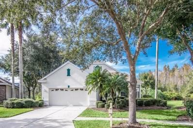 10104 Evergreen Hill Drive, Tampa, FL 33647 - MLS#: T3144408