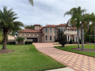 17923 Cachet Isle Drive, Tampa, FL 33647 - MLS#: T3144415