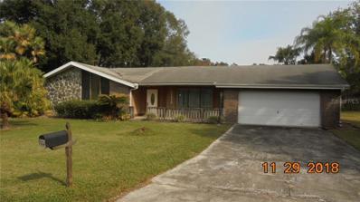 22436 Southshore Drive, Land O Lakes, FL 34639 - MLS#: T3144435
