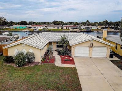 1125 Rushmore Drive, Holiday, FL 34690 - #: T3144504