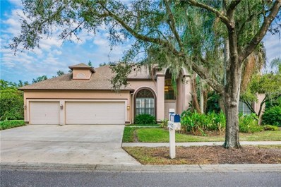4212 Thistle Terrace Place, Valrico, FL 33596 - MLS#: T3144894