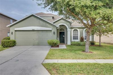 30545 Annadale Drive, Wesley Chapel, FL 33545 - MLS#: T3145032